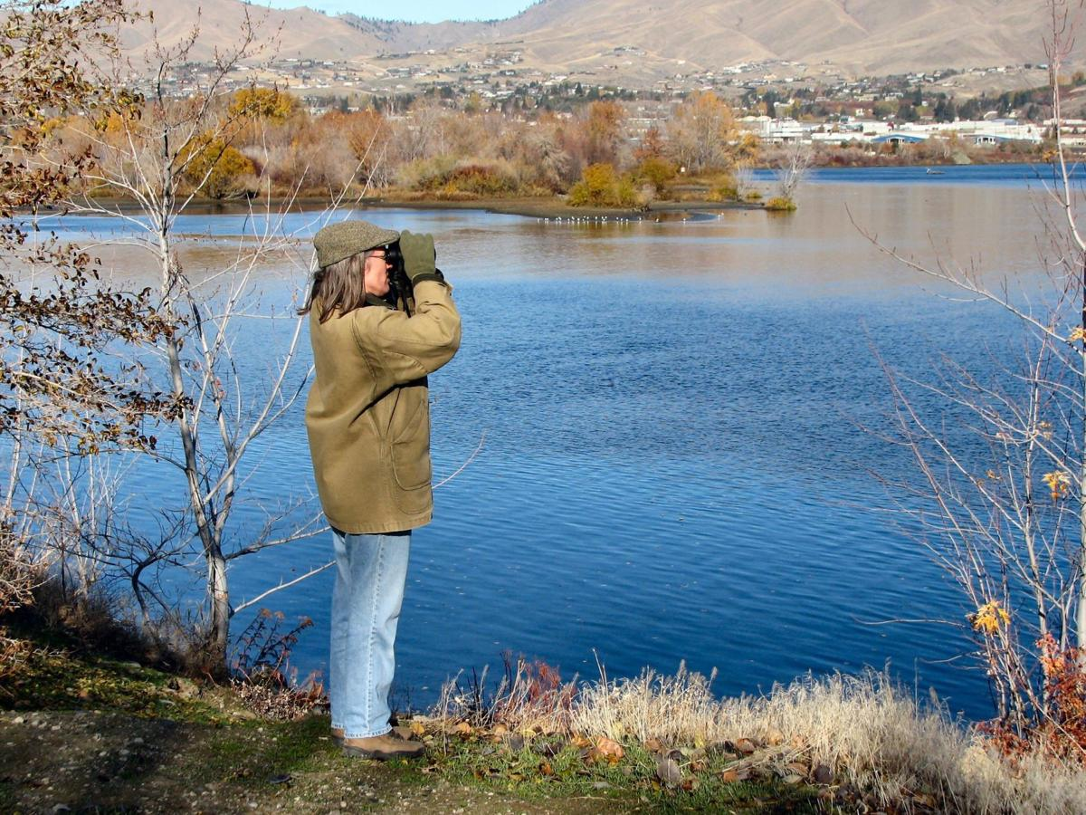 Add birding to your life list
