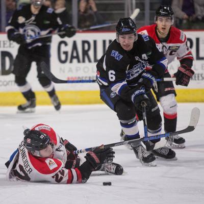 01232019 WildHockey 23.jpg
