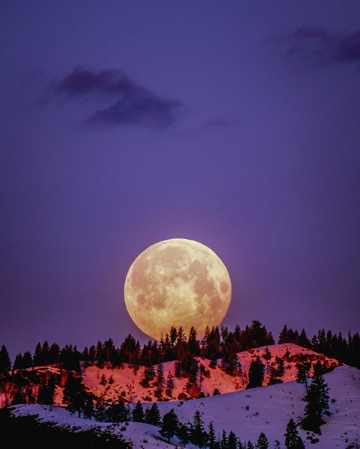 CHAMBER Frank Cone evening-full-moon-light-2361600.jpg