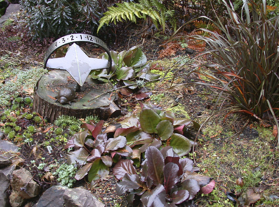 In the Garden   Now is the time to make plans for next winter's gardenscape