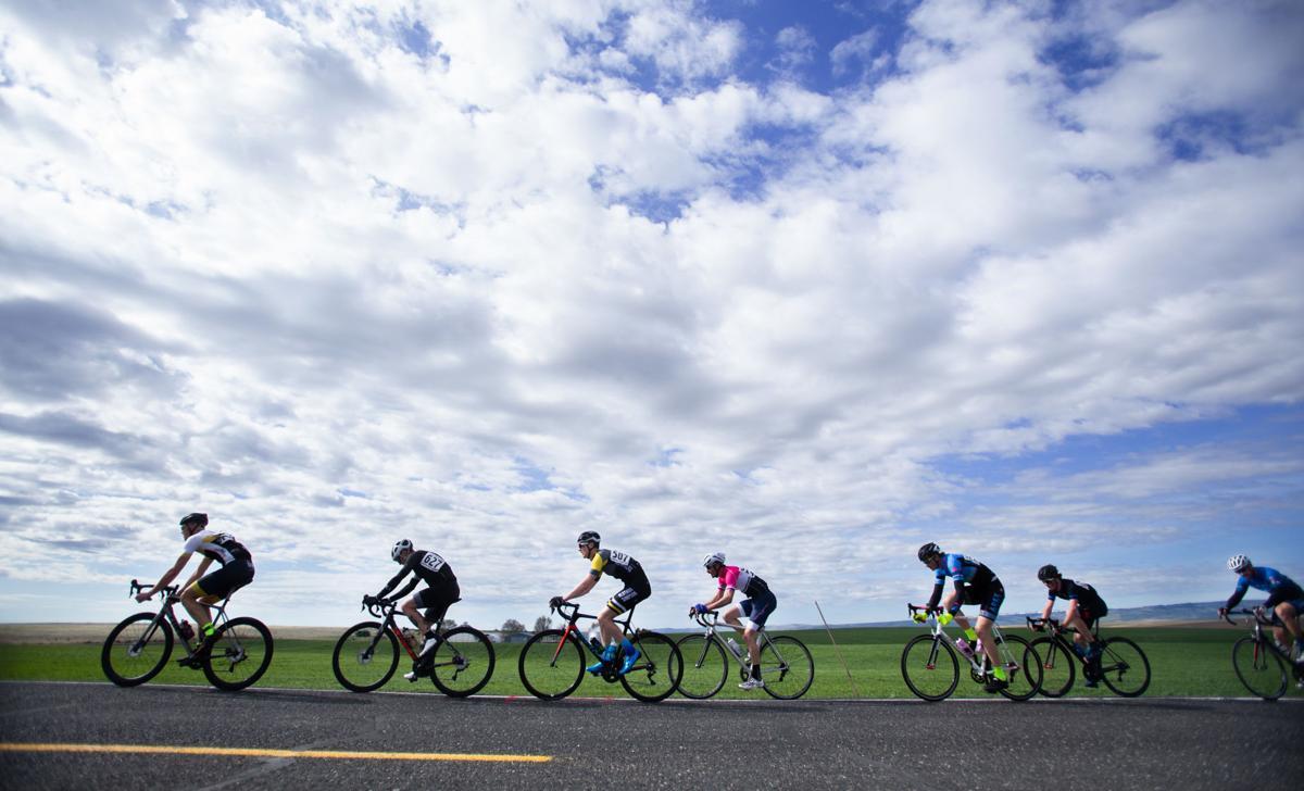 art of the Tour de Bloom Stage Race