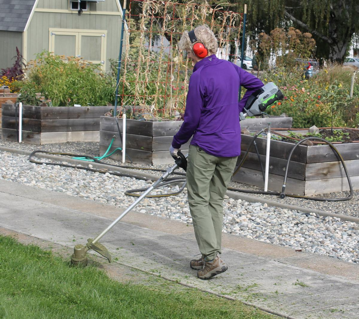 Time for end-of-season gardening