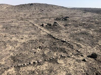 The Sagebrush Flat Wildlife Area burned by wildfire