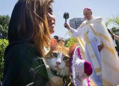 US-NEWS-RELIG-CATHOLIC-BISHOPS-1-GET