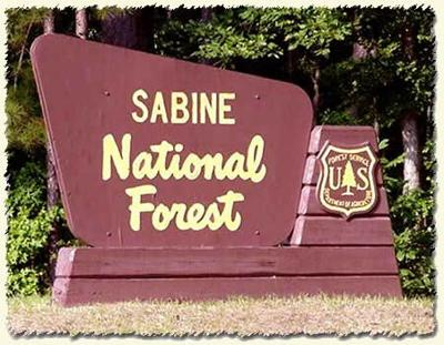 sabine national forest.jpg