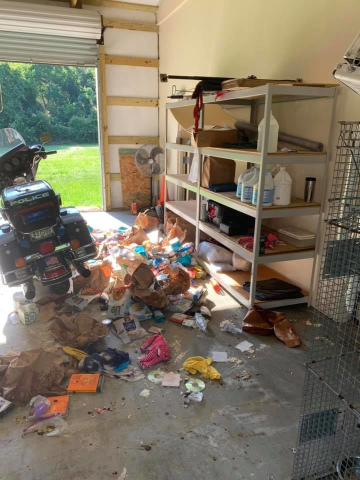 BPSO Animal Shelter break in 1.jpg