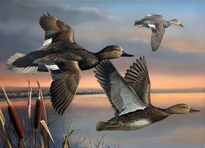 2016 Louisiana Duck Stamp