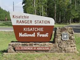 kisatchie national forest.jpg