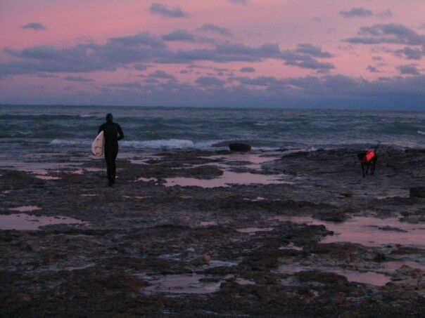 Dawn Swell Search