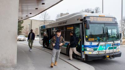 LTC Buses 2