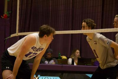 Western Vs McMaster Volleyball Picture