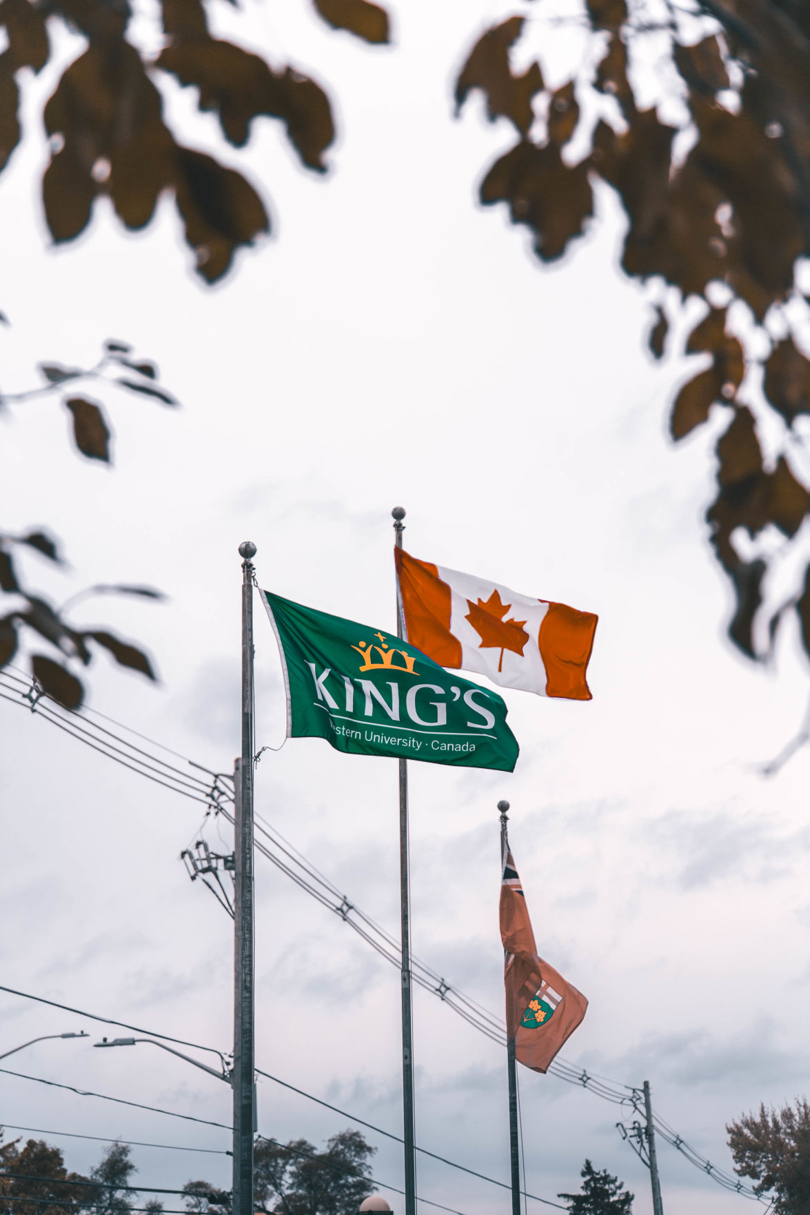 King' University College (Photo 2)