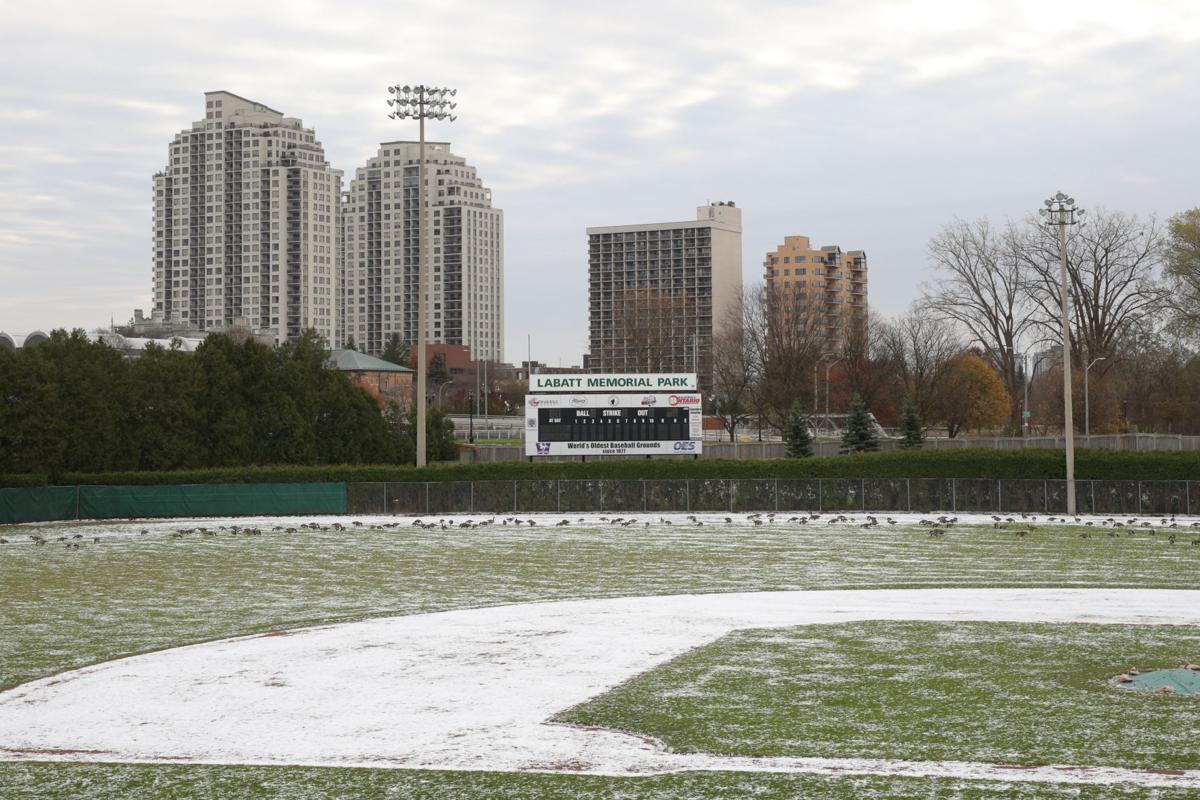 Labatt Park outfield