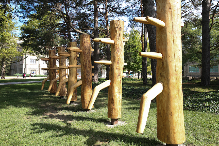 art installation sticks
