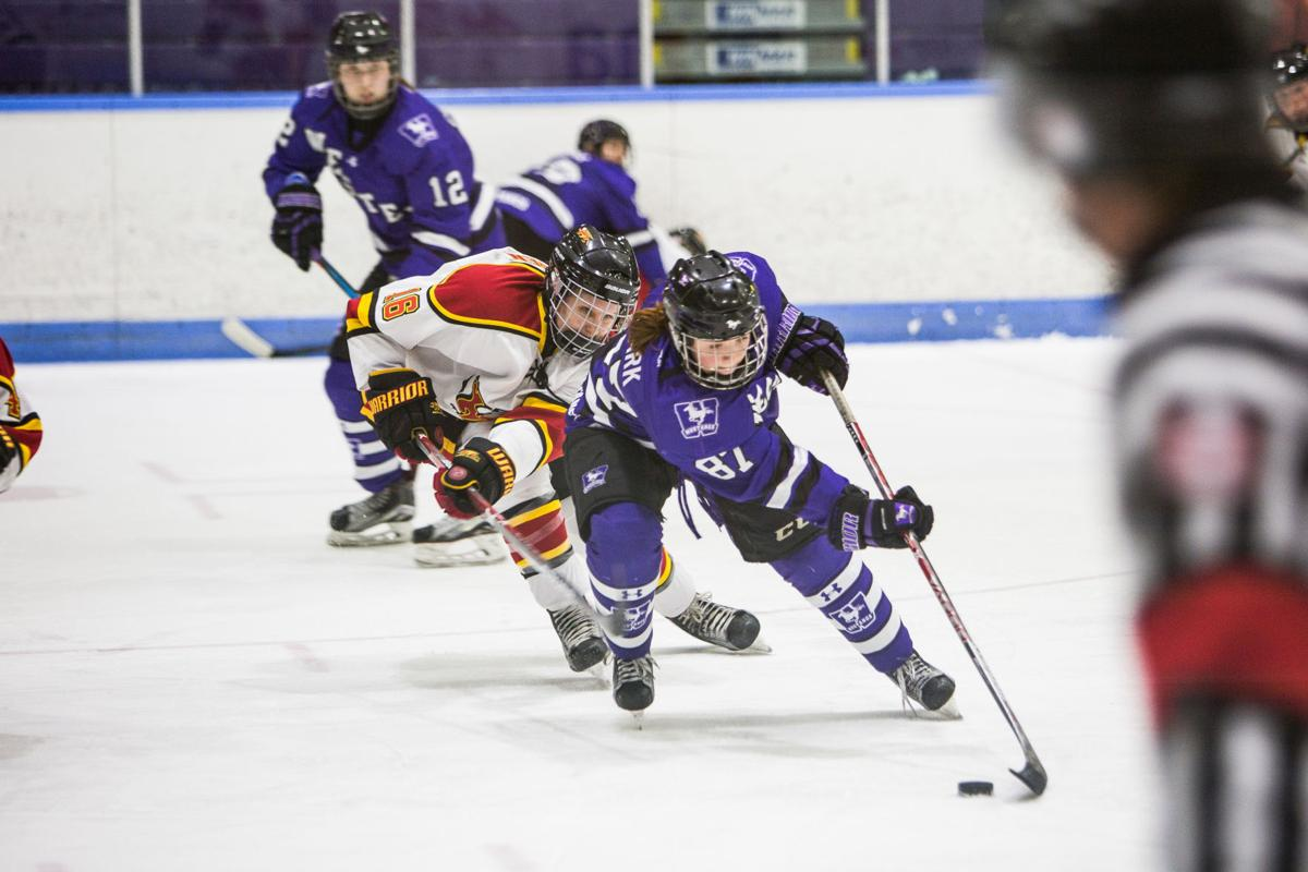 Women's Hockey vs Guelph (Photo 1, In-Game)