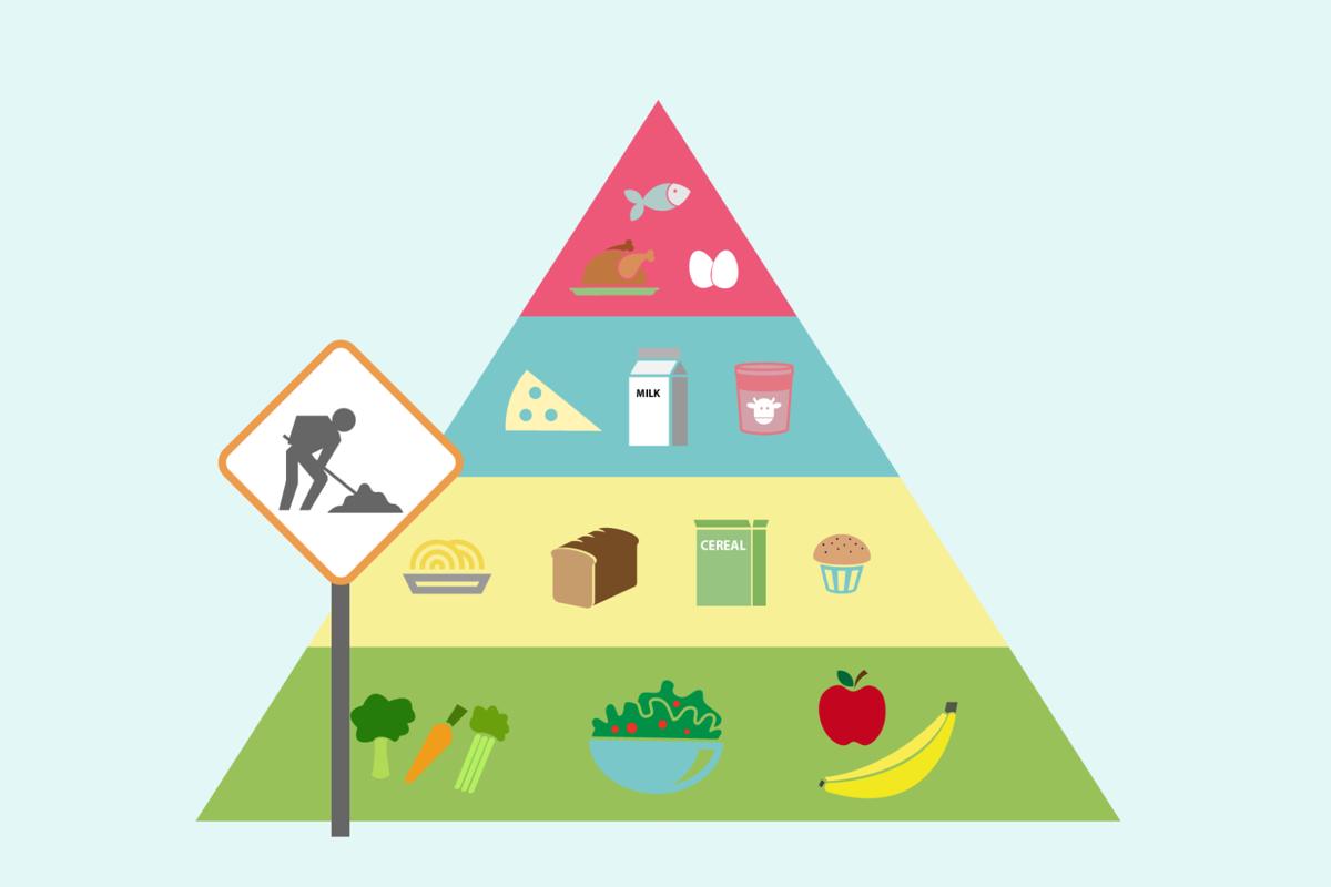 Canada's Food Guide Revamp