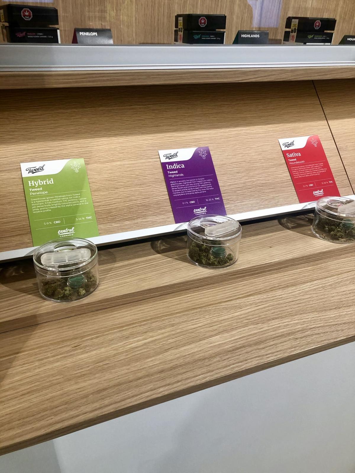Central Cannabis (Photo 3)