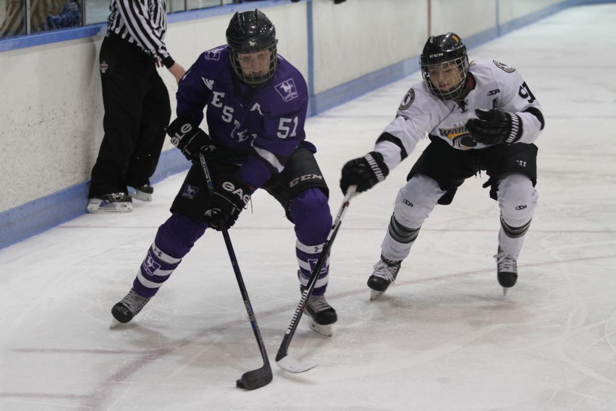 Women's Hockey vs. Waterloo - 6