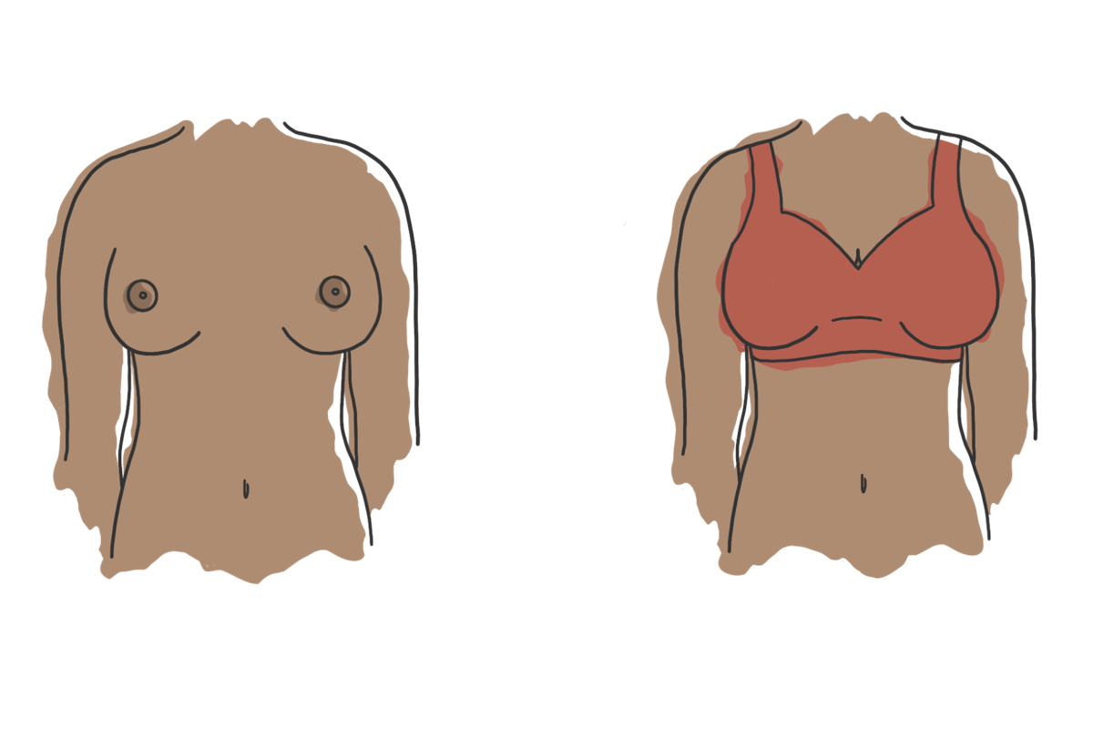 SEX ISSUE: Size inclusive lingerie vs braless graphic (png - transparent background)