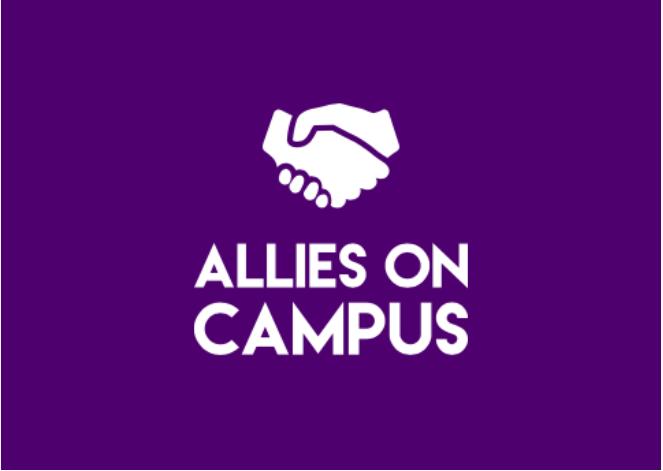 Male allies (Photo 1)