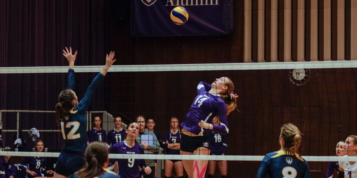 Veltman_volleyball_alumni