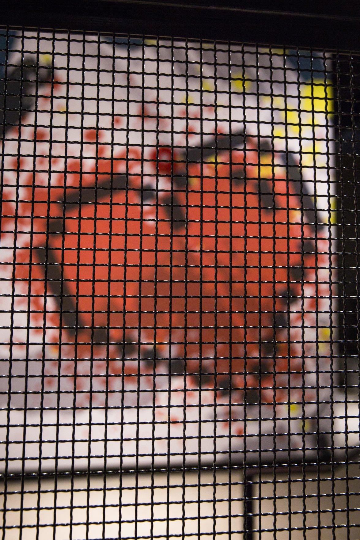 Rec Room (Photo 1, Heart)