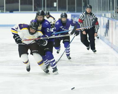 Women's Hockey Western vs Laurier - Liam McInnis-3.jpg