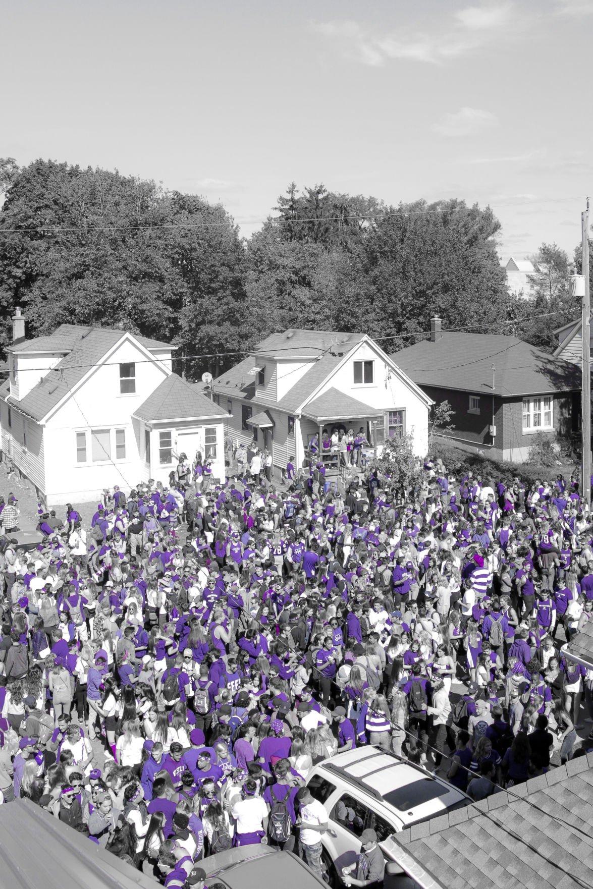 Purple days (Photo 6)
