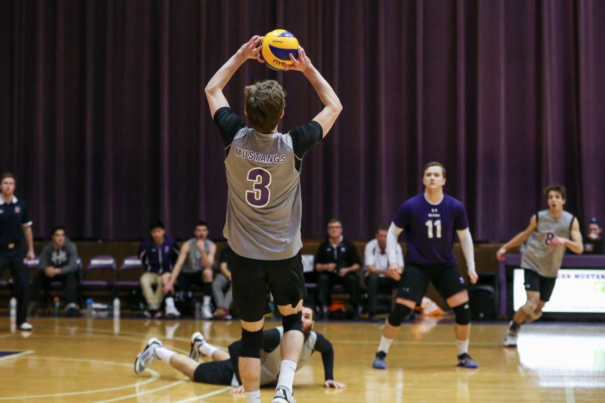 photo_men's volleyball vs. york - Kyle Porter-8.jpg