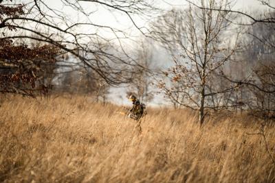 PHOTOS: Prescribed burns at Asylum Lake Preserve