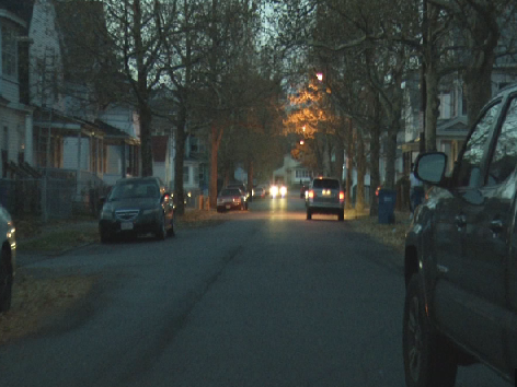 Residents in a Springfield neighborhood still not receiving mail following dog issue