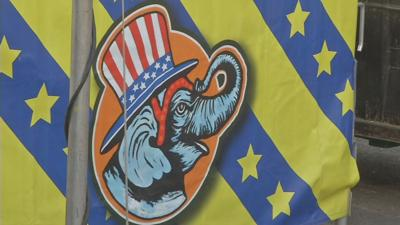 Details released on death of Big E elephant.