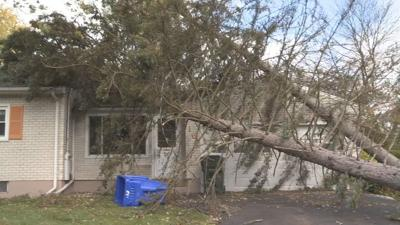 Springfield homeowner devastated after tree comes down onto house he's trying to sell