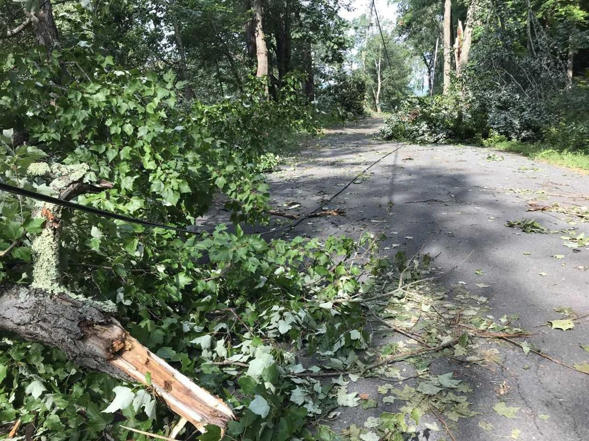 NWS: microburst hit Deerfield and Montague on Tuesday   News