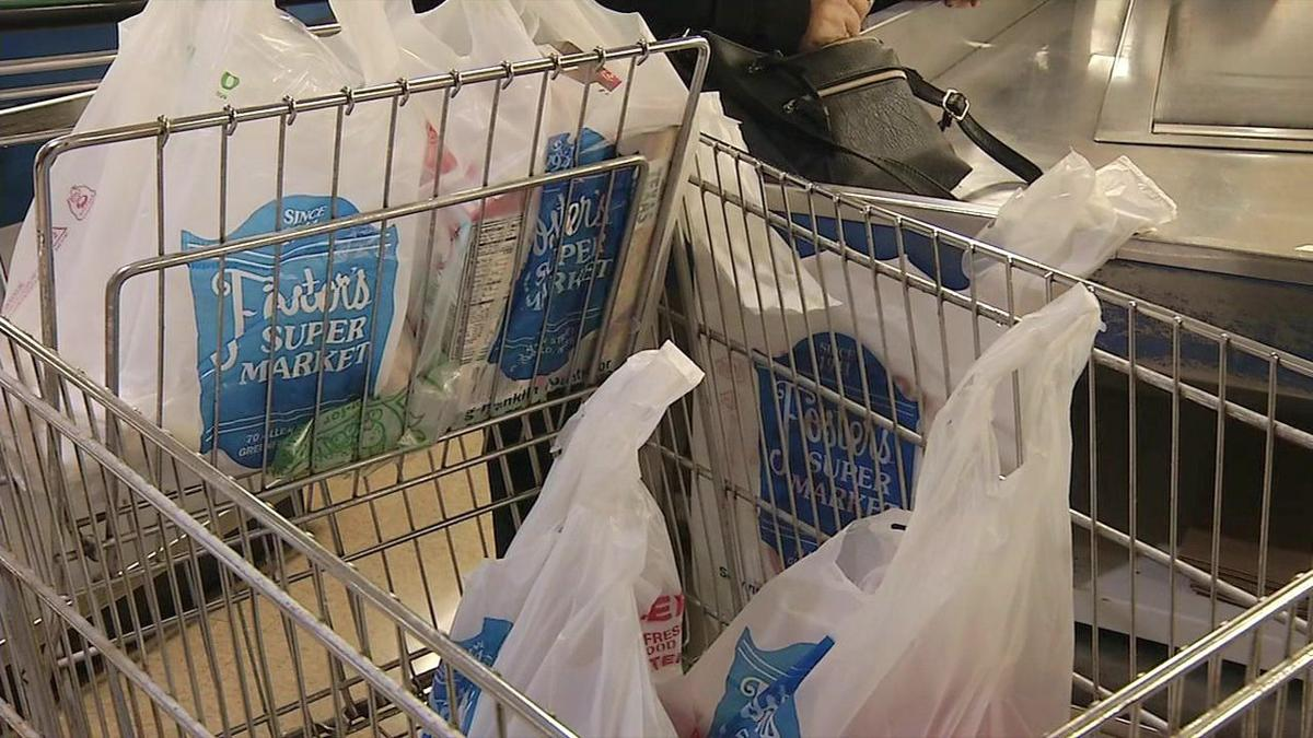 Greenfield pushing to eliminate non-disposable bags