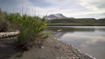 Tribes, environmental groups sue to stop mine in Alaskan salmon spawning areas