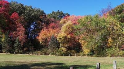 Fall foliage season has begun in New England
