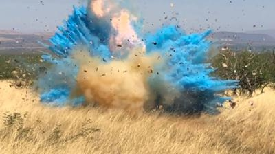 Gender Reveal Explosion Wildfire