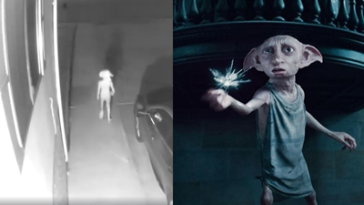 Mysterious figure resembles Dobby the House Elf