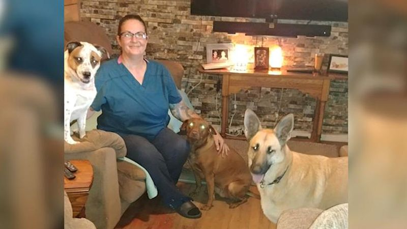 Strangers rent van for woman who planned to ride out hurricane with 7 rescue dogs