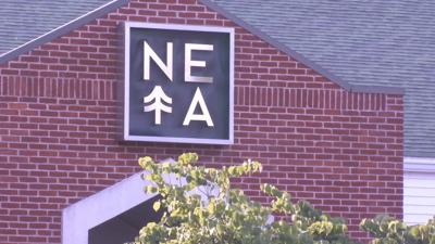 Cannabis Control Commission approves Surterra Wellness' acquisition of NETA.