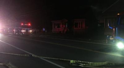 Two dogs perish, ten displaced after fire rips through Chicopee home.