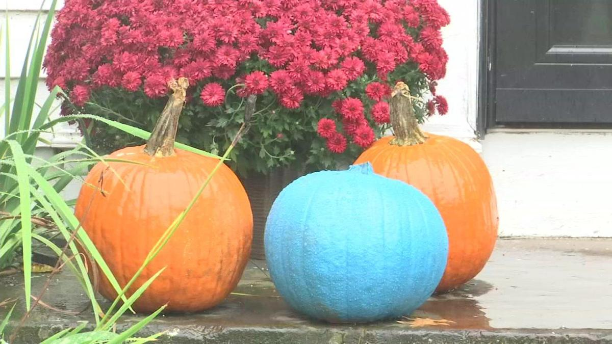Teal Pumpkin Project provides options for kids with allergies for Halloween