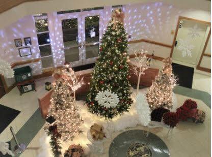 treelights2