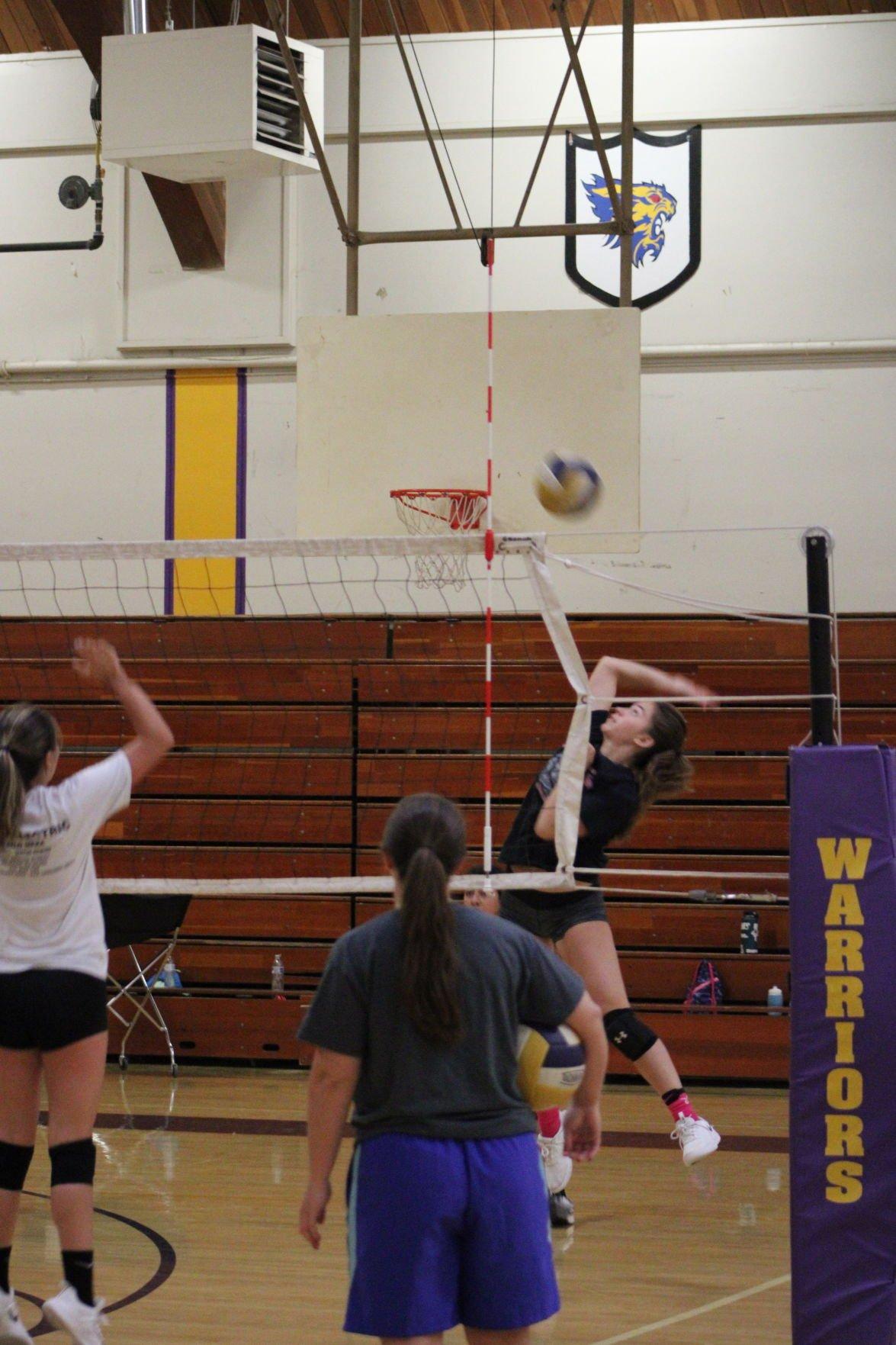 ohs volleyball 2.JPG