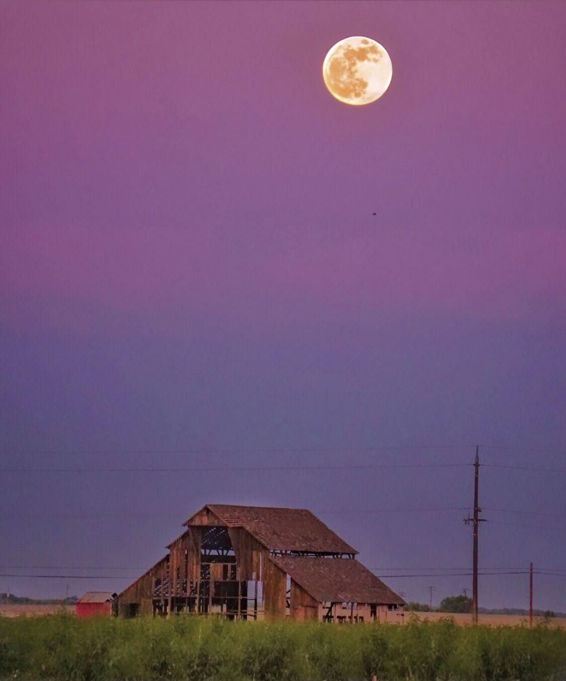 Lunar Eclipse & Blood Moon