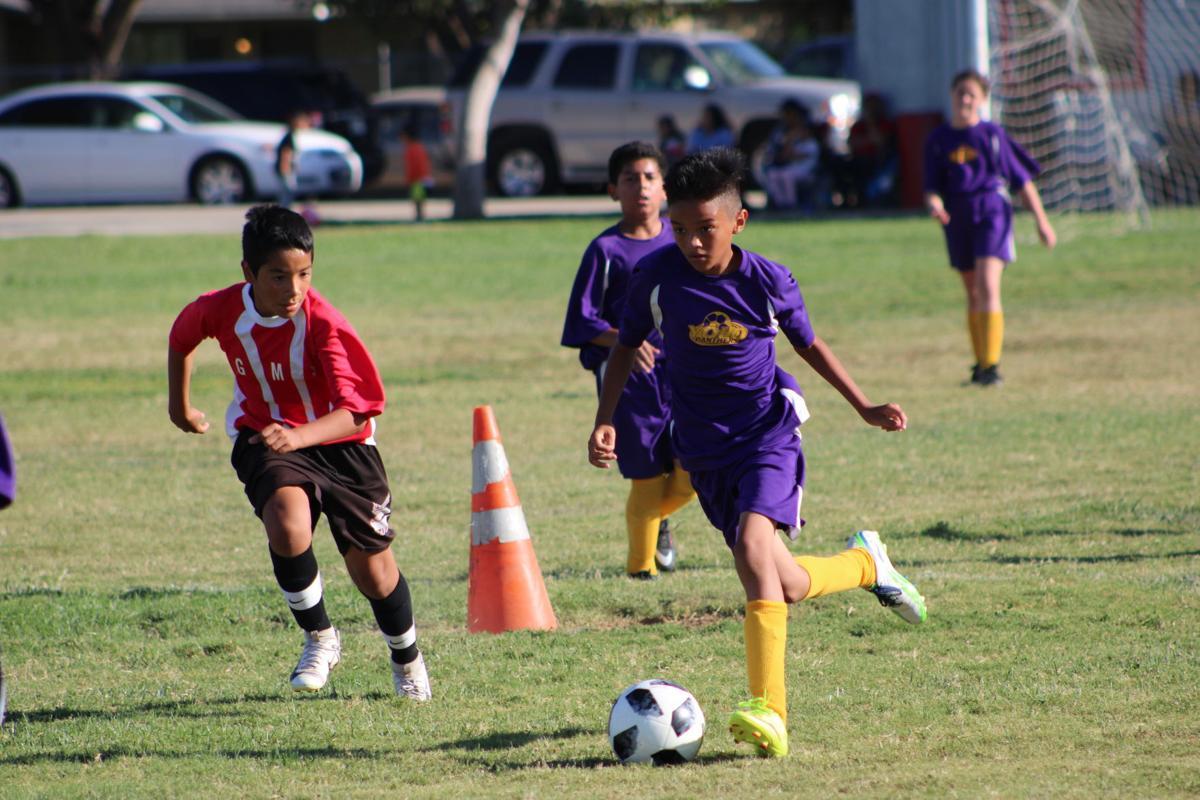 yms soccer 3.JPG