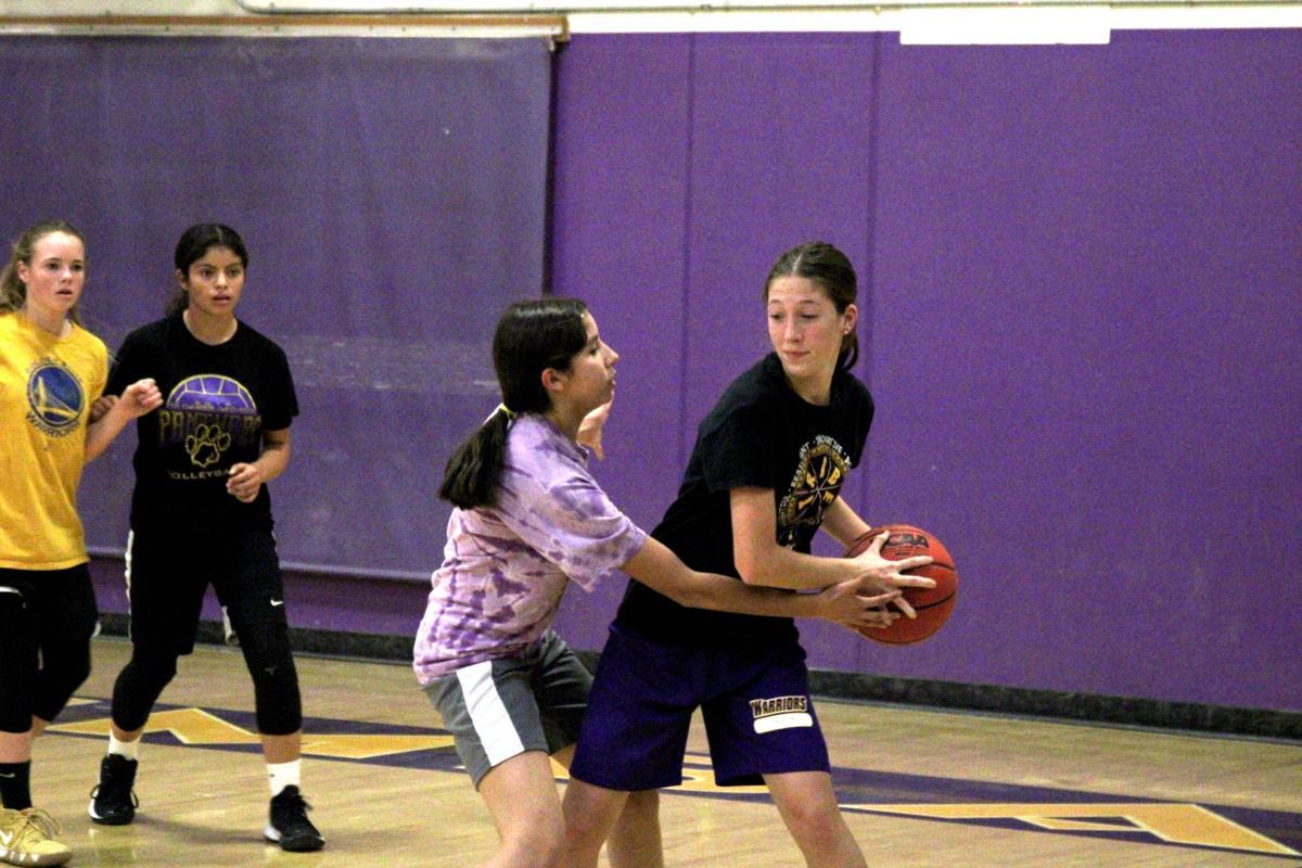 ohs girls basketball 2.JPG