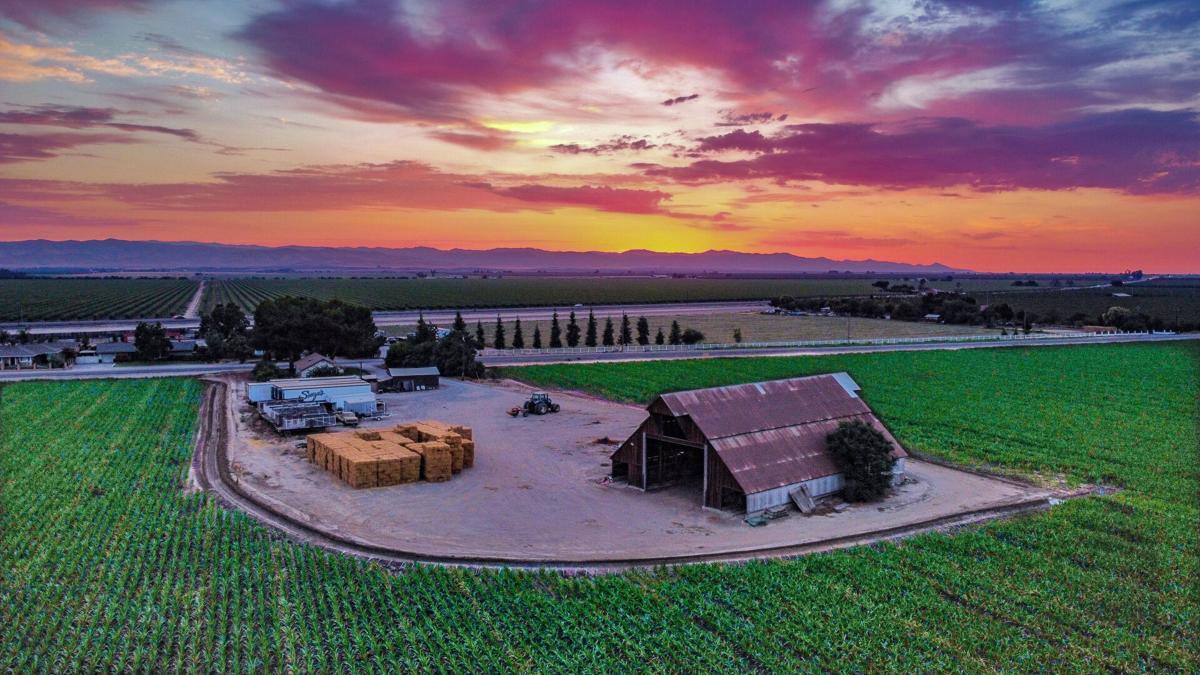 Sunset 1 Dan Gomes.jpg
