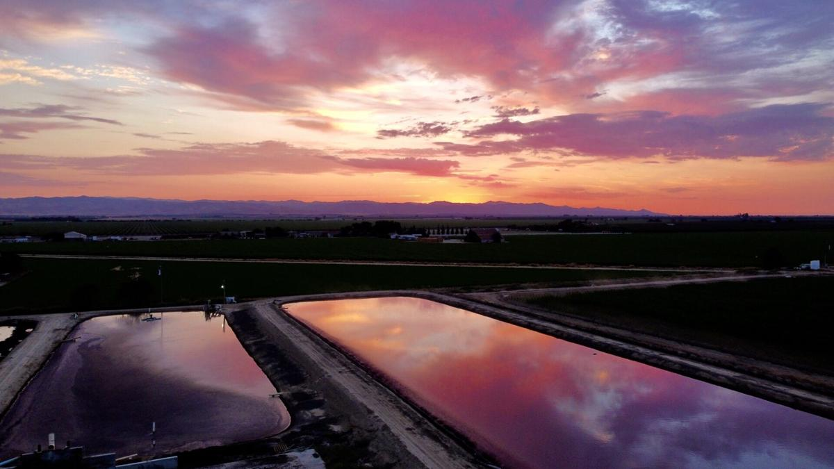 Sunset 2 Dan Gomes.jpg